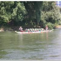 Drachenboot 2016 542