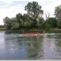 Drachenboot 2016 553